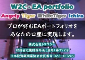 W2C-EA-portfolio